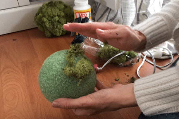 Make Your Own Moss Topiary