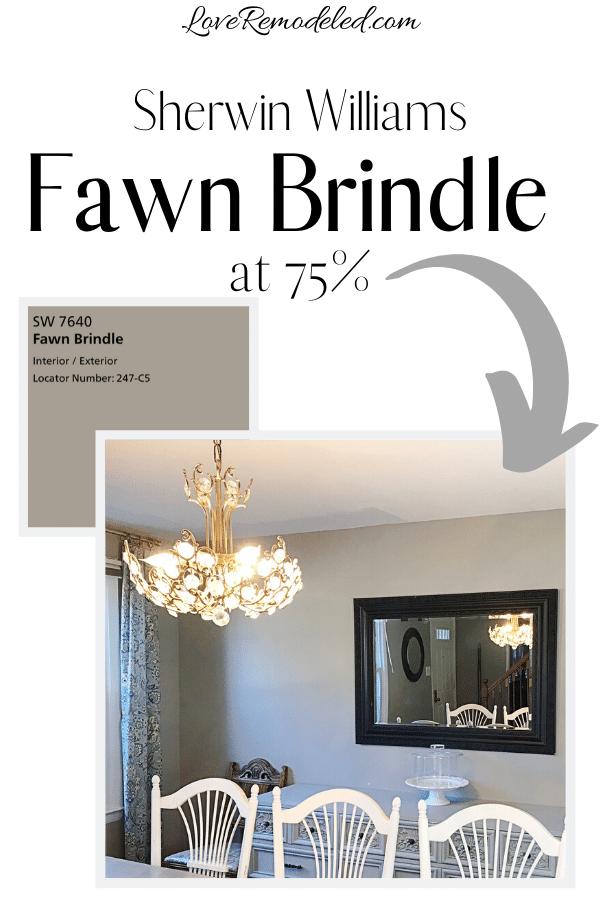 Fawn Brindle