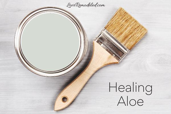 Healing Aloe Paint Color