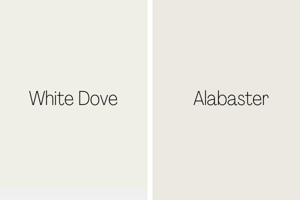 White Dove vs Alabaster
