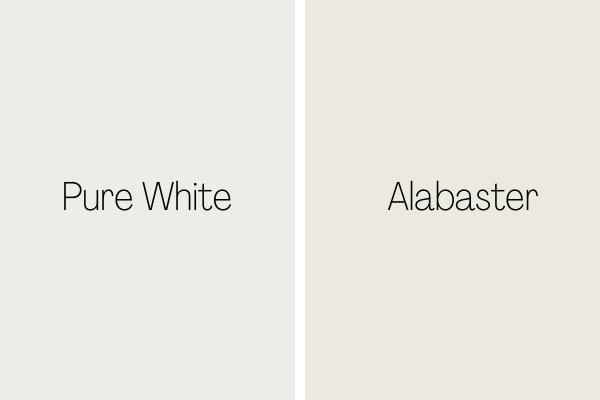 Pure White vs. Alabaster
