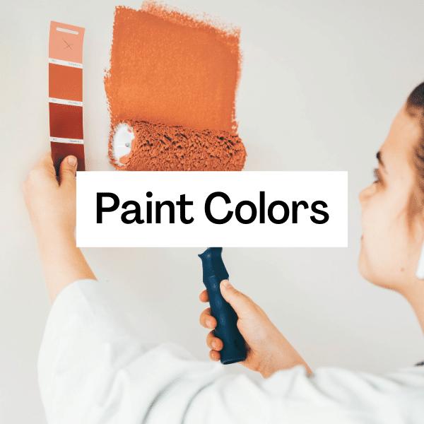 Choose a Paint Color