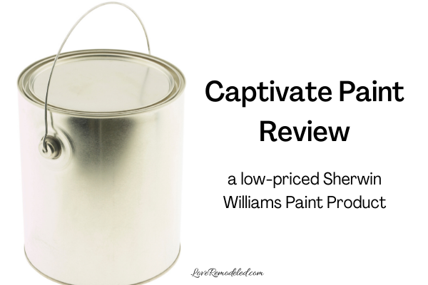 Review of Captivate Paint