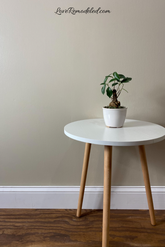 Accessible Beige paint color, Sherwin Williams