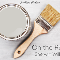 On the Rocks by Sherwin Williams