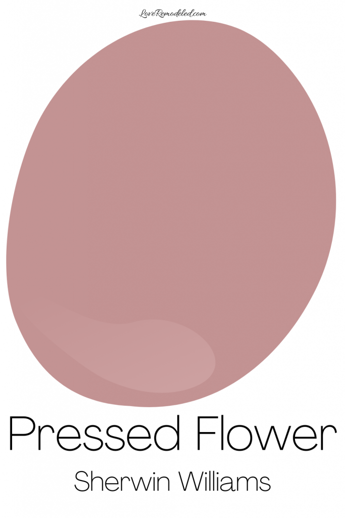 Pink Paint Color - Pressed Flower